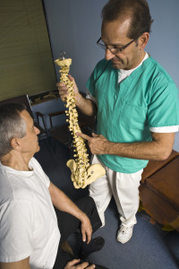 Chiropractor demonstrating the human spine to a patient.
